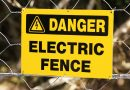 One bar's shocking way to keep customers at a safe distance: An electric fence