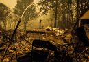 After Wildfires Stop Burning, a Danger in the Drinking Water