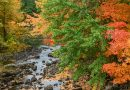 Leaf Peeping Is Not Canceled: 6 Drives and Hikes to Try This Fall