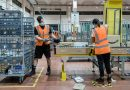 Pushed by Pandemic, Amazon Goes on a Hiring Spree Without Equal