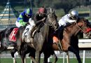 Deep Within Relief Bill, Horse Racing Gets New Tools to Clean Up