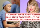 Greys Anatomy Camilla Luddington Interview