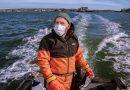 Why Isn't Kelp Catching On?