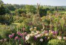 In Dorset, Jasper Conran's Garden Runs Wild